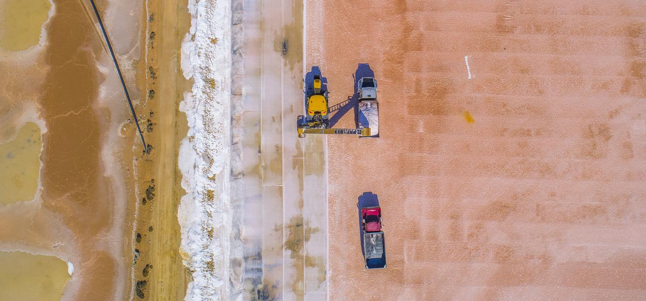 Cheetham Salt Project